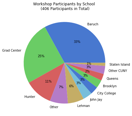 Pie chart showing workshop participation
