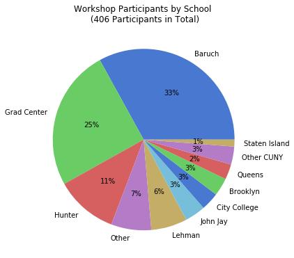 Pie chart showing workshop participation